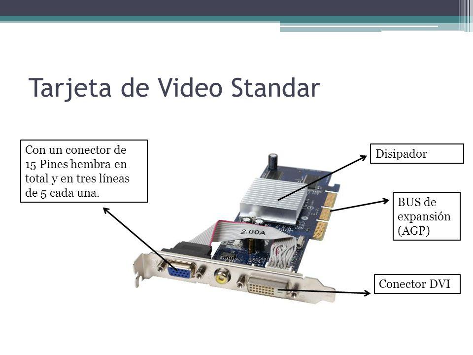 Tarjeta de Video Standar
