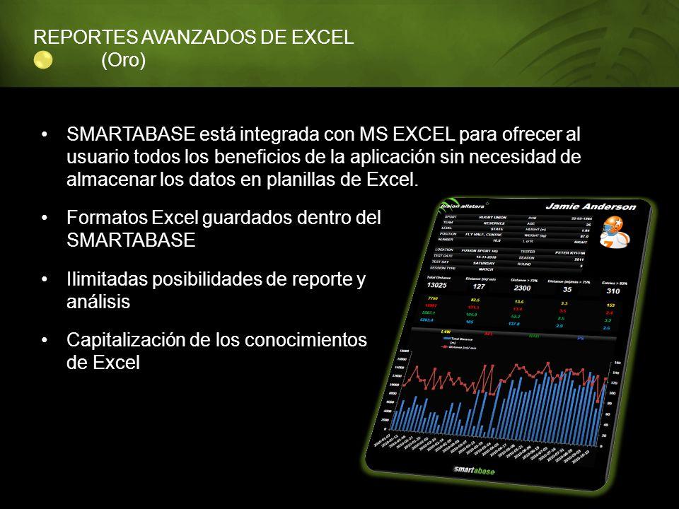 REPORTES AVANZADOS DE EXCEL (Oro)