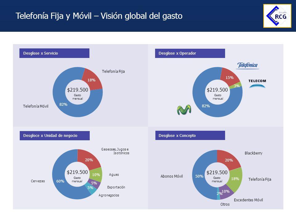 Telefonía Fija y Móvil – Visión global del gasto