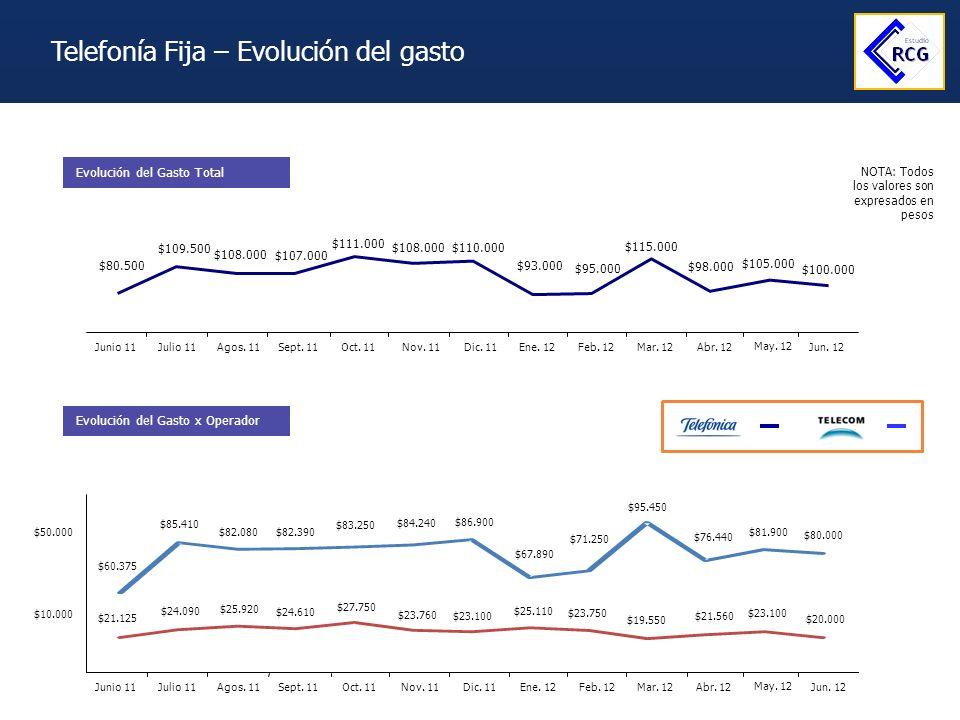 Telefonía Fija – Evolución del gasto