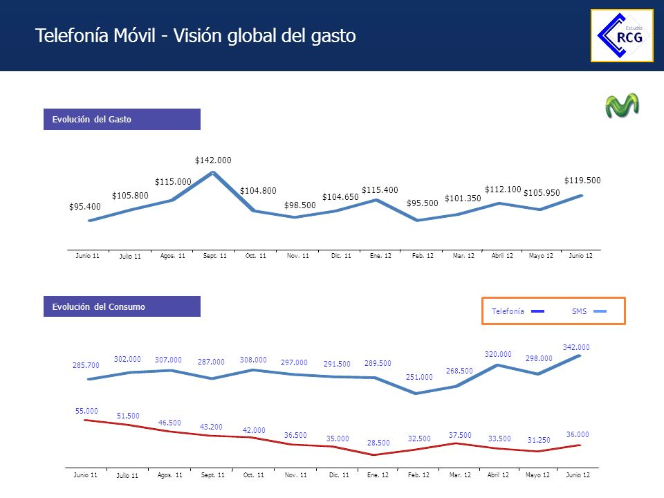 Telefonía Móvil - Visión global del gasto