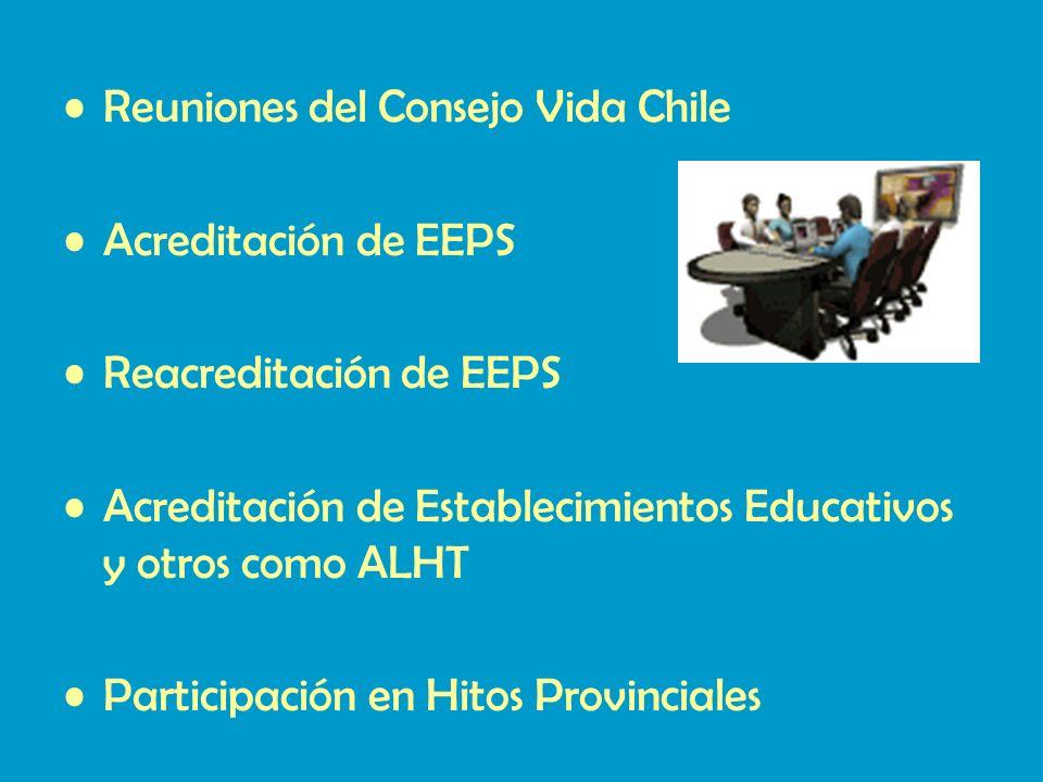 Reuniones del Consejo Vida Chile