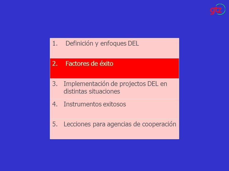Definición y enfoques DEL