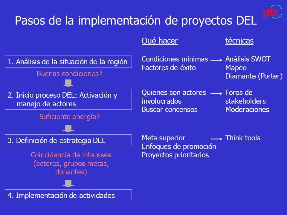 Pasos de la implementación de proyectos DEL