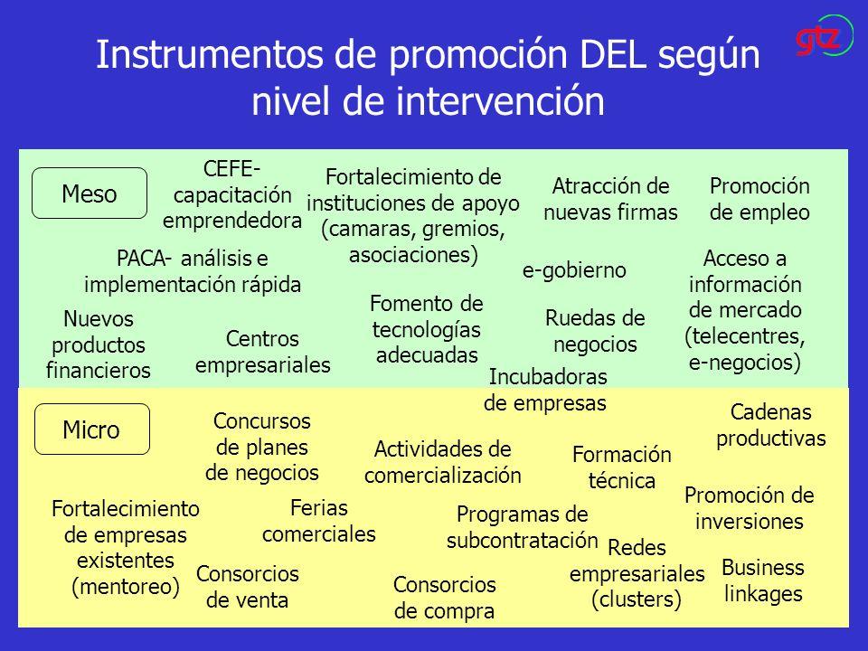 Instrumentos de promoción DEL según nivel de intervención