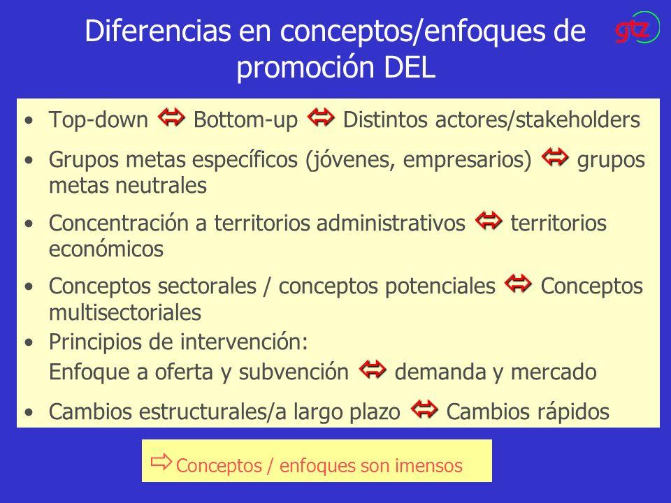 Diferencias en conceptos/enfoques de promoción DEL