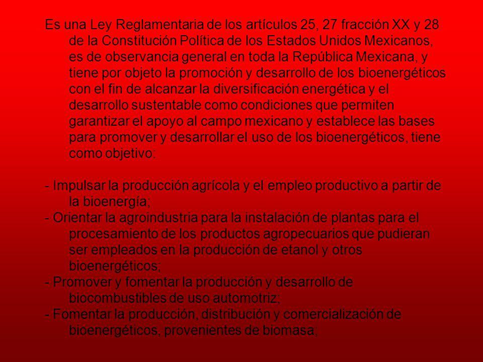 Es una Ley Reglamentaria de los artículos 25, 27 fracción XX y 28 de la Constitución Política de los Estados Unidos Mexicanos, es de observancia general en toda la República Mexicana, y tiene por objeto la promoción y desarrollo de los bioenergéticos con el fin de alcanzar la diversificación energética y el desarrollo sustentable como condiciones que permiten garantizar el apoyo al campo mexicano y establece las bases para promover y desarrollar el uso de los bioenergéticos, tiene como objetivo: