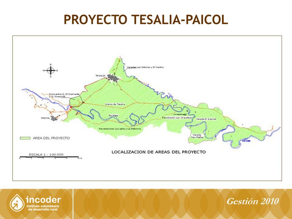 PROYECTO TESALIA-PAICOL