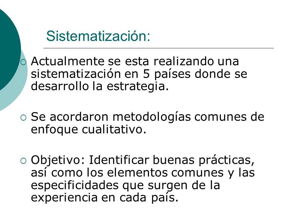 Sistematización:Actualmente se esta realizando una sistematización en 5 países donde se desarrollo la estrategia.
