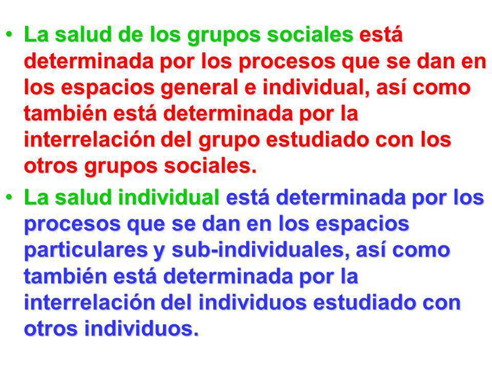 La salud de los grupos sociales está determinada por los procesos que se dan en los espacios general e individual, así como también está determinada por la interrelación del grupo estudiado con los otros grupos sociales.