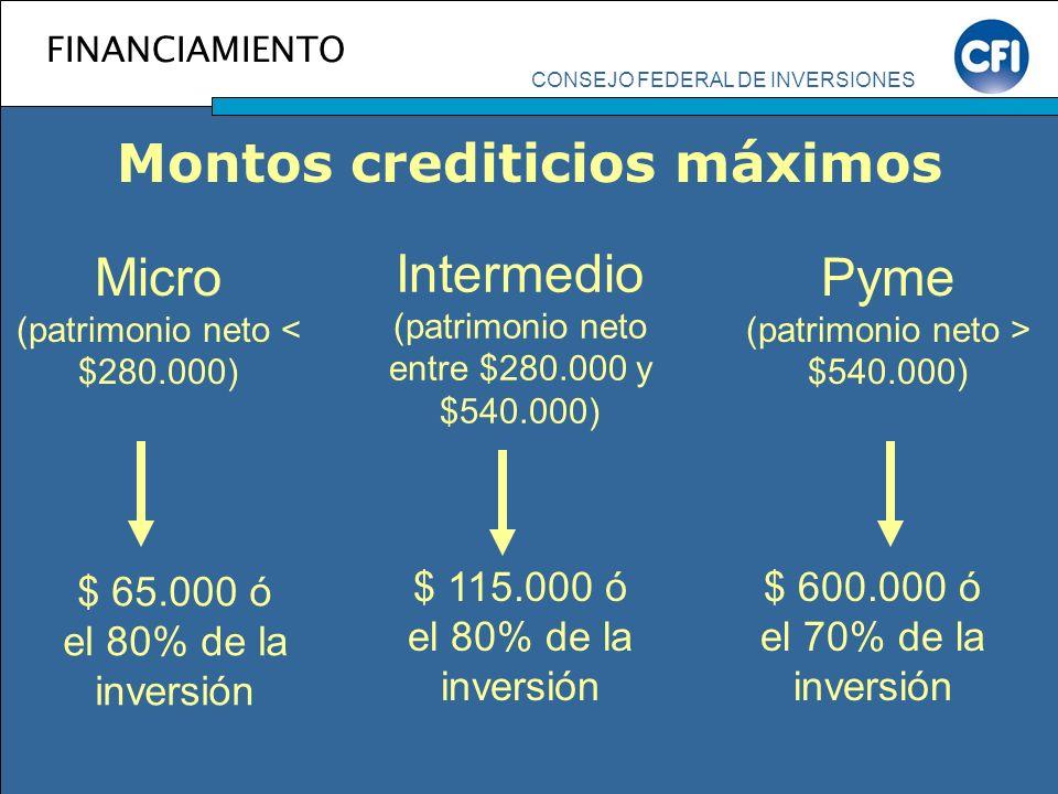 Micro (patrimonio neto < $280.000)