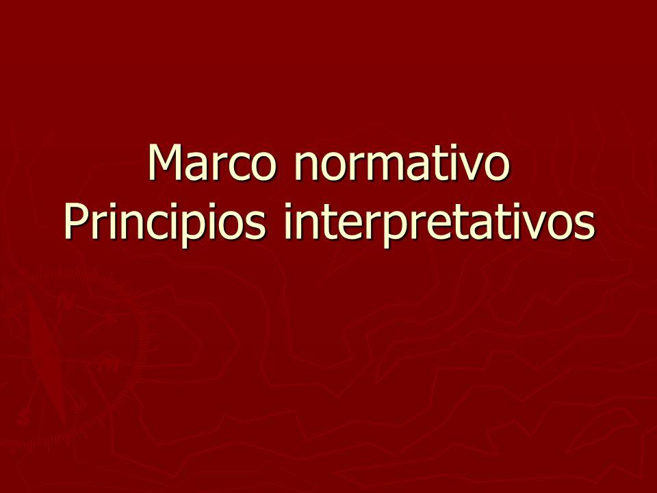 Marco normativo Principios interpretativos