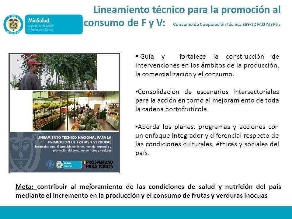 Lineamiento técnico para la promoción al consumo de F y V: Convenio de Cooperación Técnica 389-12 FAO MSPS.