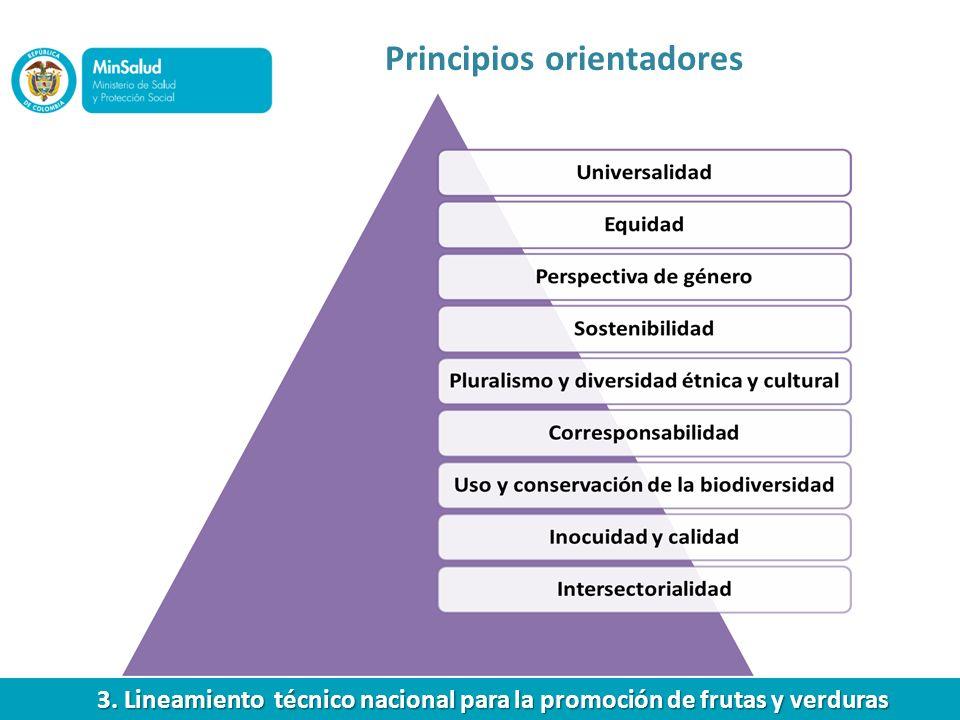 Principios orientadores