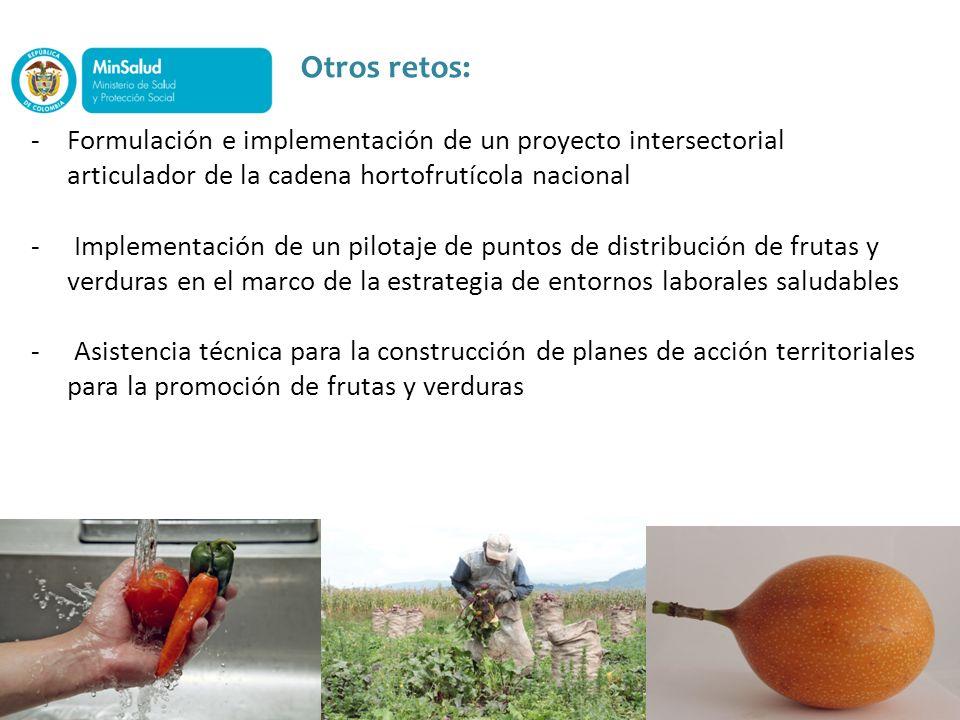 Otros retos:Formulación e implementación de un proyecto intersectorial articulador de la cadena hortofrutícola nacional.