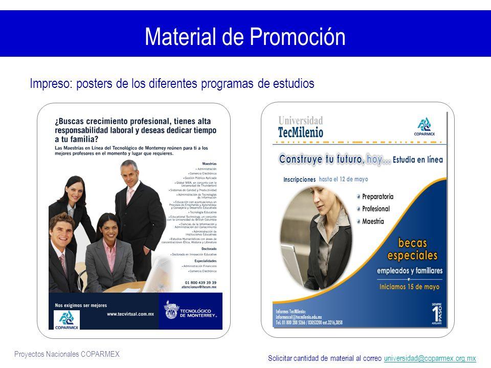 Material de Promoción Impreso: posters de los diferentes programas de estudios.