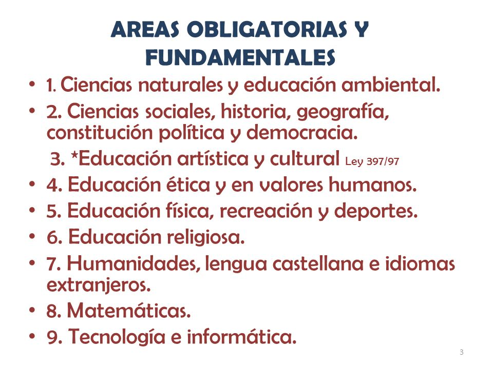 AREAS OBLIGATORIAS Y FUNDAMENTALES