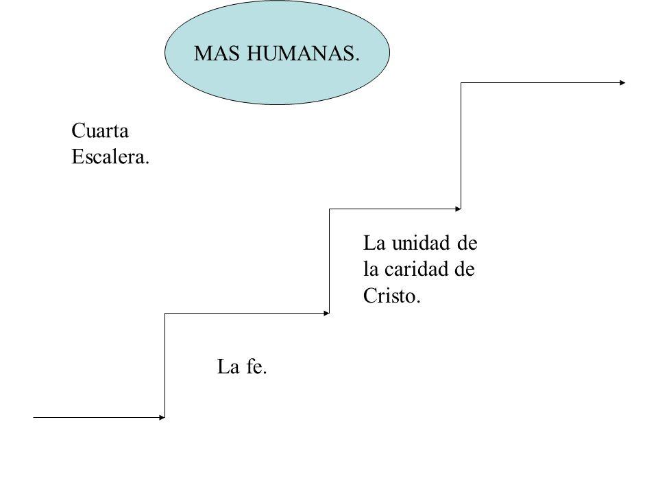 MAS HUMANAS. Cuarta Escalera. La unidad de la caridad de Cristo. La fe.