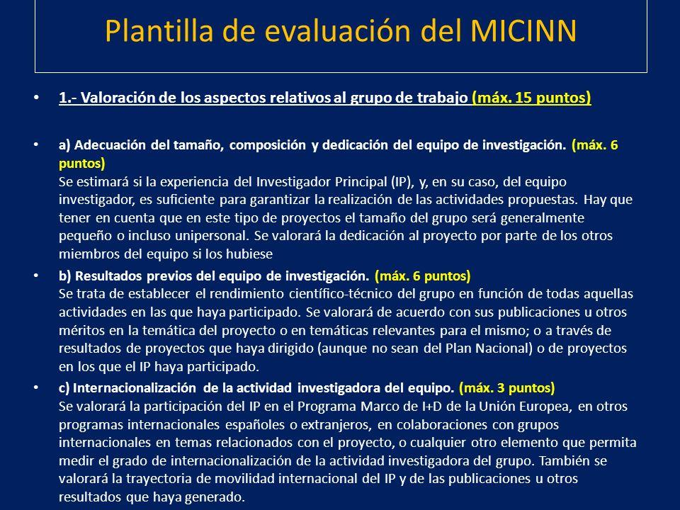 Plantilla de evaluación del MICINN