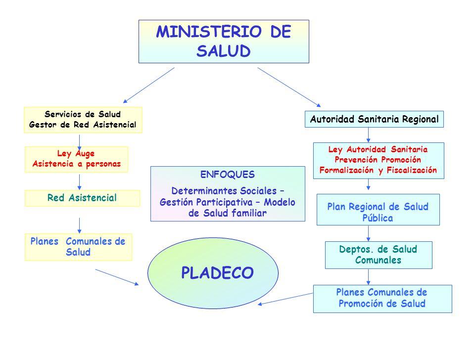 MINISTERIO DE SALUD PLADECO