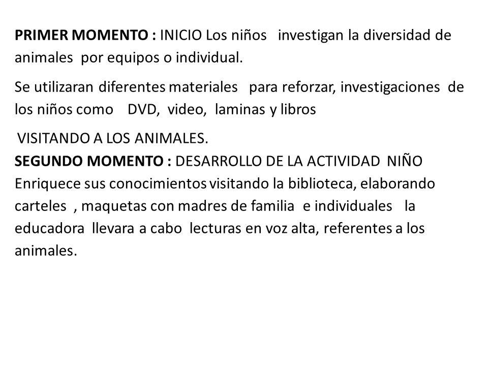PRIMER MOMENTO : INICIO Los niños investigan la diversidad de animales por equipos o individual.