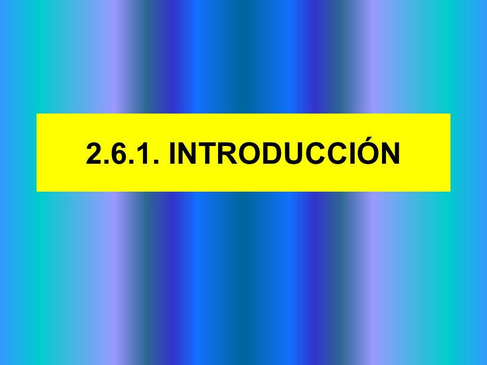 2.6.1. INTRODUCCIÓN