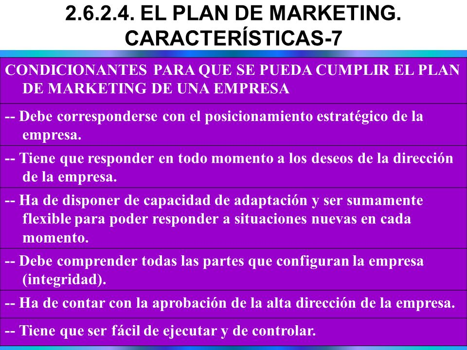 2.6.2.4. EL PLAN DE MARKETING. CARACTERÍSTICAS-7