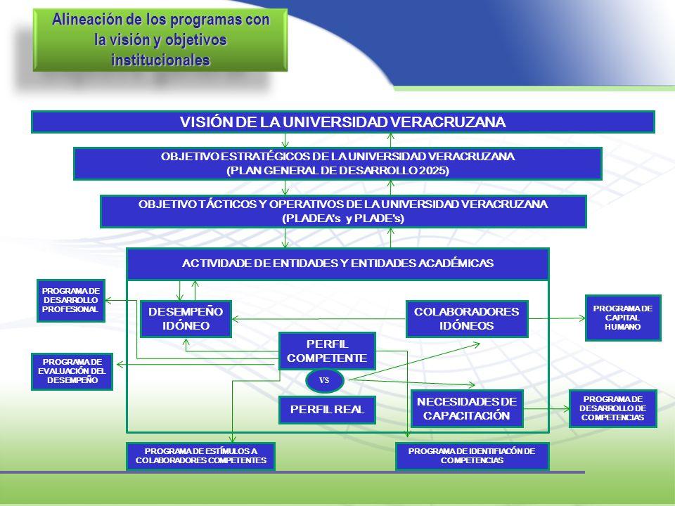 Alineación de los programas con la visión y objetivos institucionales