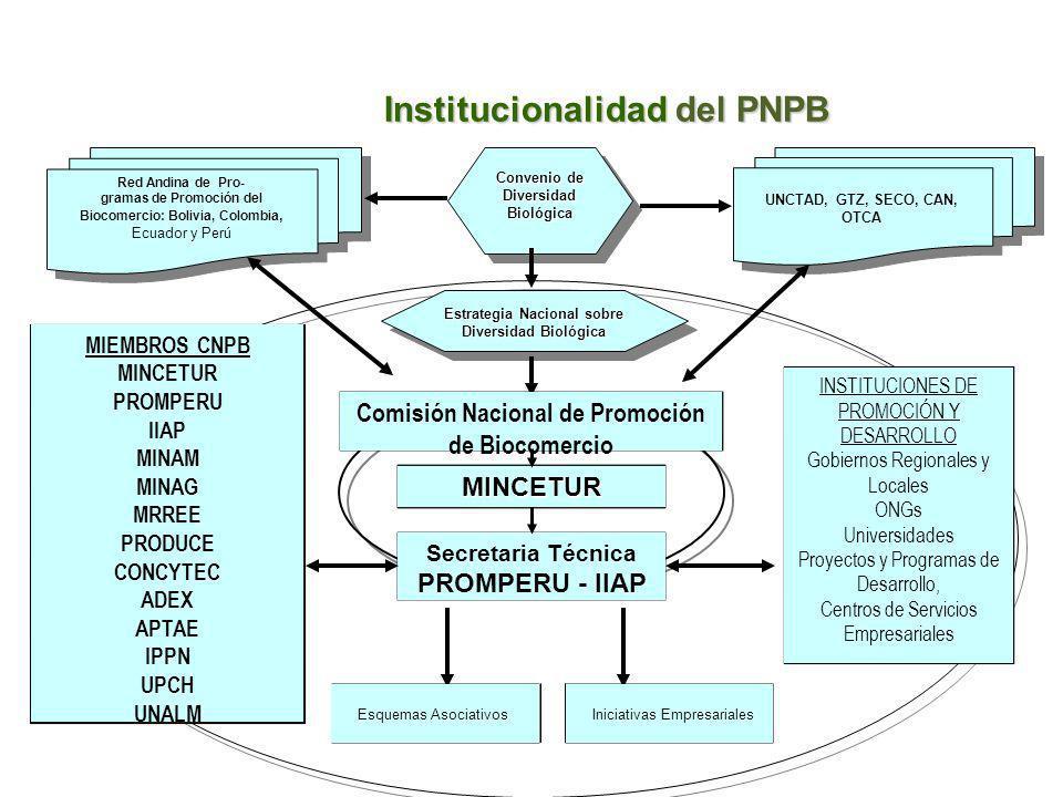 Institucionalidad del PNPB