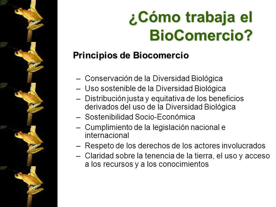 ¿Cómo trabaja el BioComercio