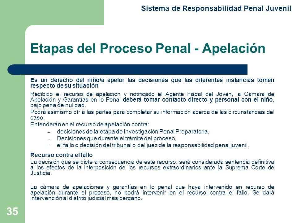 Etapas del Proceso Penal - Apelación