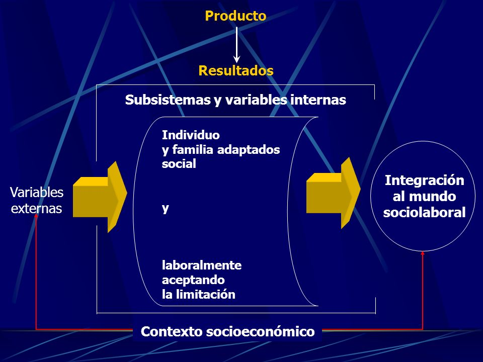 Subsistemas y variables internas