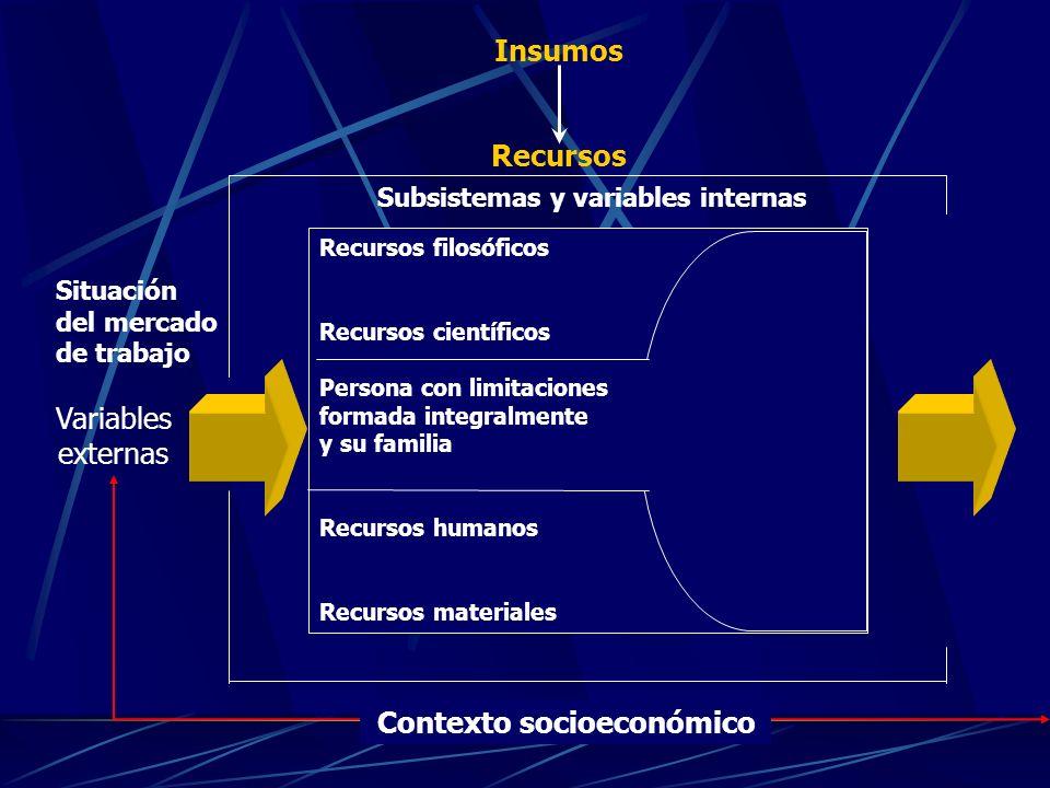 Subsistemas y variables internas Contexto socioeconómico