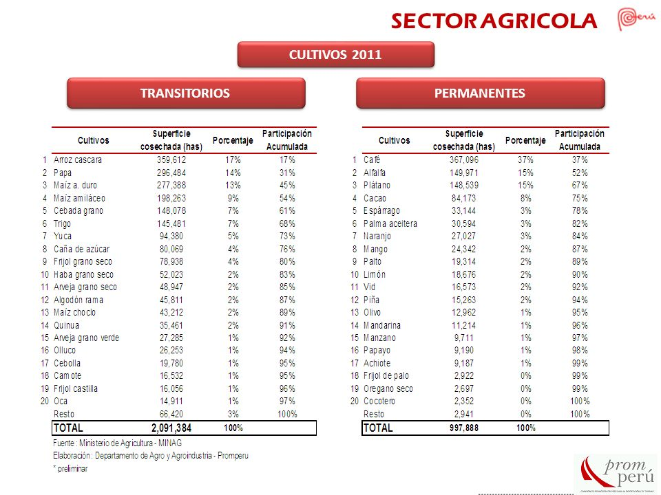 SECTOR AGRICOLA CULTIVOS 2011 TRANSITORIOS PERMANENTES