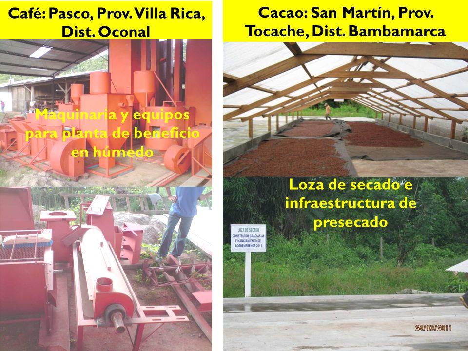 Café: Pasco, Prov. Villa Rica, Dist. Oconal