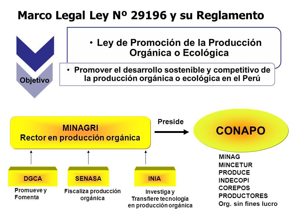 Marco Legal Ley Nº 29196 y su Reglamento