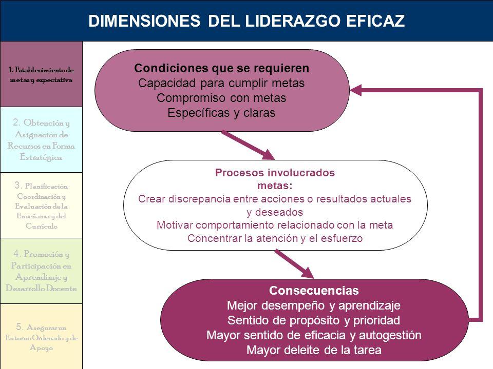 DIMENSIONES DEL LIDERAZGO EFICAZ