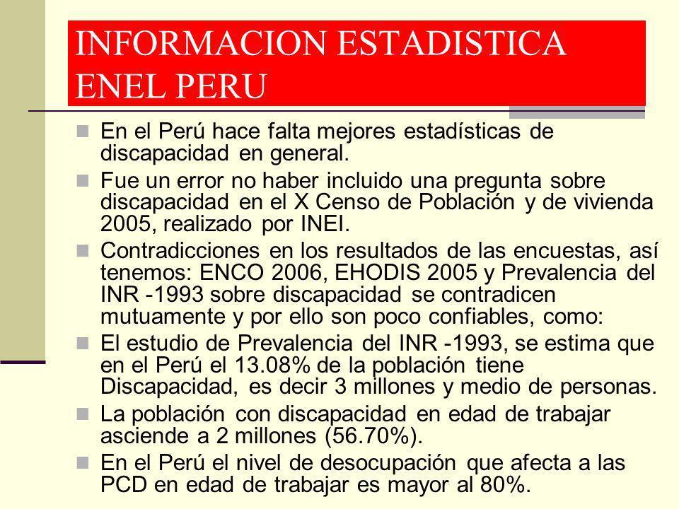 INFORMACION ESTADISTICA ENEL PERU