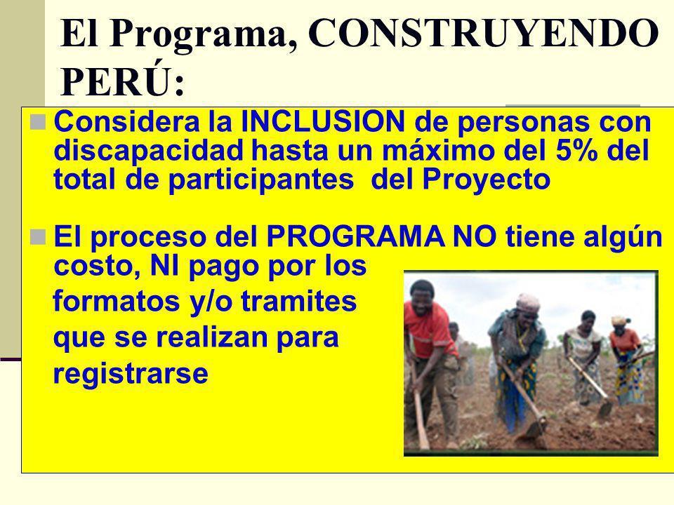 El Programa, CONSTRUYENDO PERÚ: