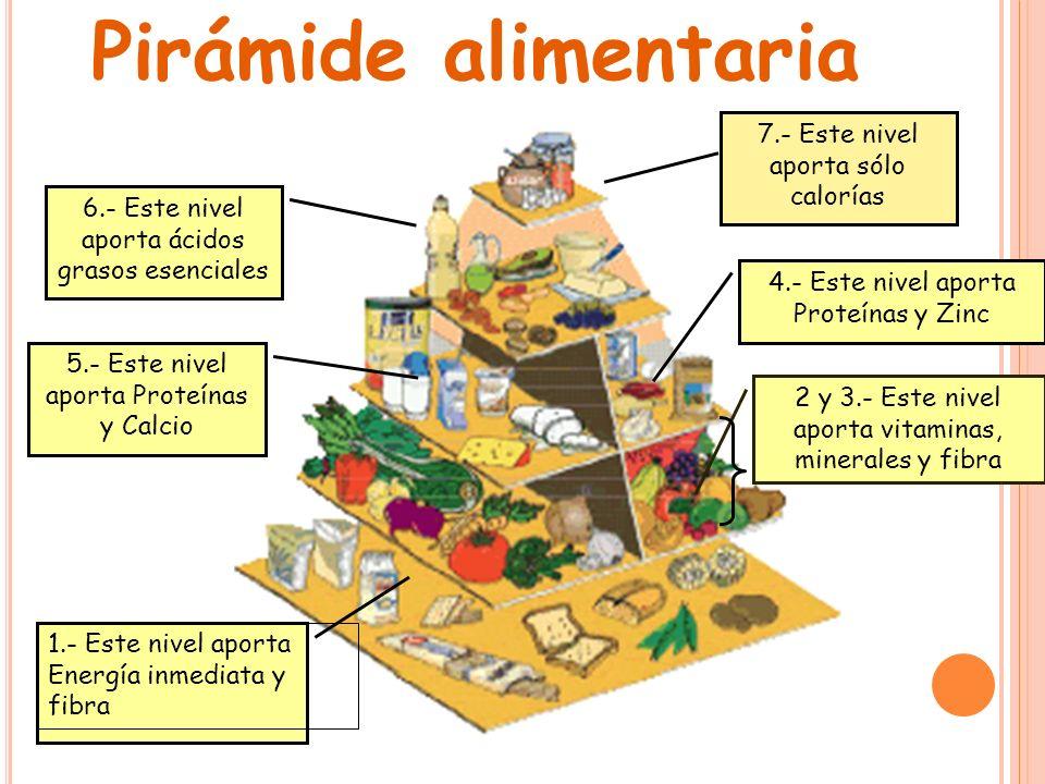 Pirámide alimentaria 7.- Este nivel aporta sólo calorías