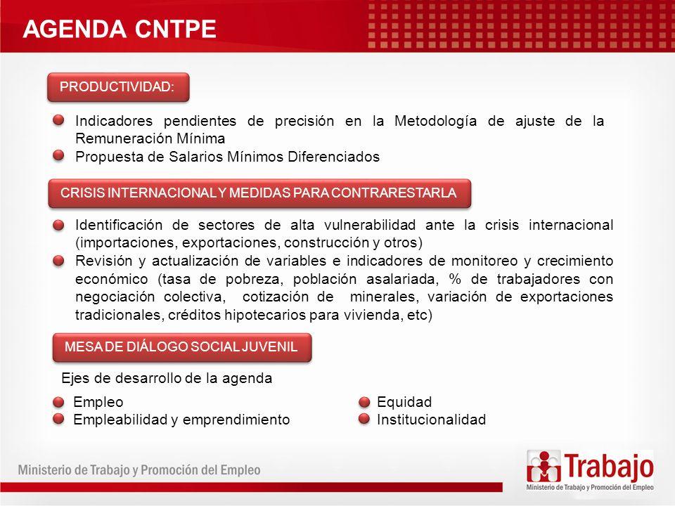 AGENDA CNTPE PRODUCTIVIDAD: Indicadores pendientes de precisión en la Metodología de ajuste de la Remuneración Mínima.