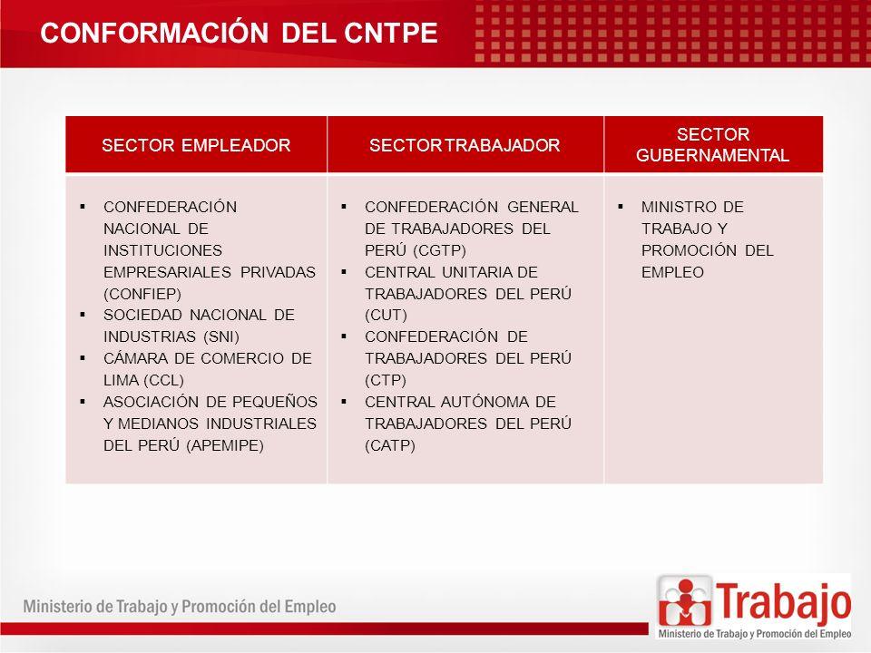 CONFORMACIÓN DEL CNTPE