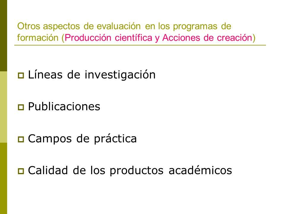 Líneas de investigación Publicaciones Campos de práctica