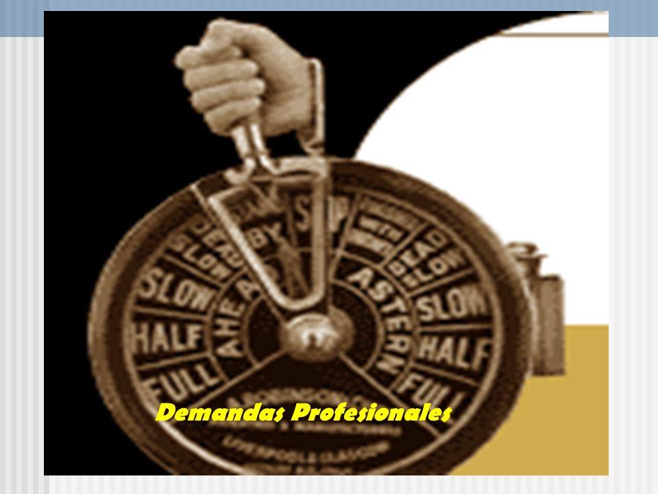 Demandas Profesionales