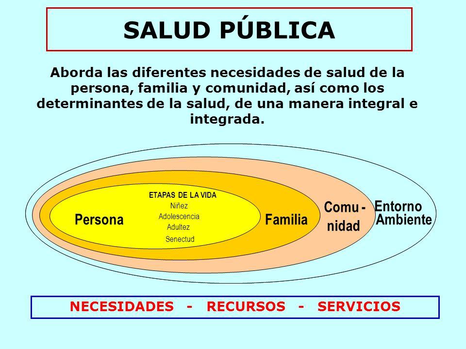NECESIDADES - RECURSOS - SERVICIOS