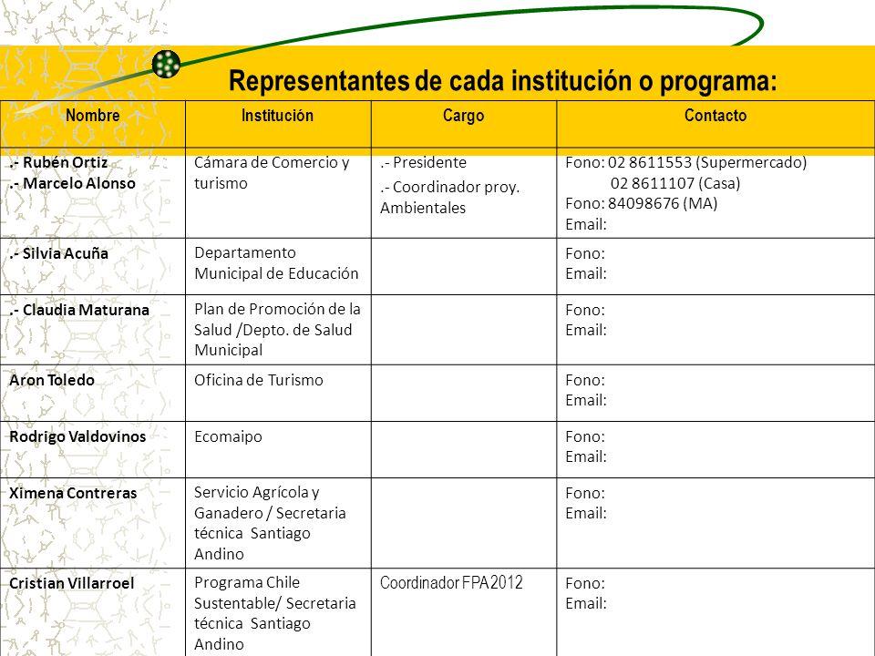 Representantes de cada institución o programa:
