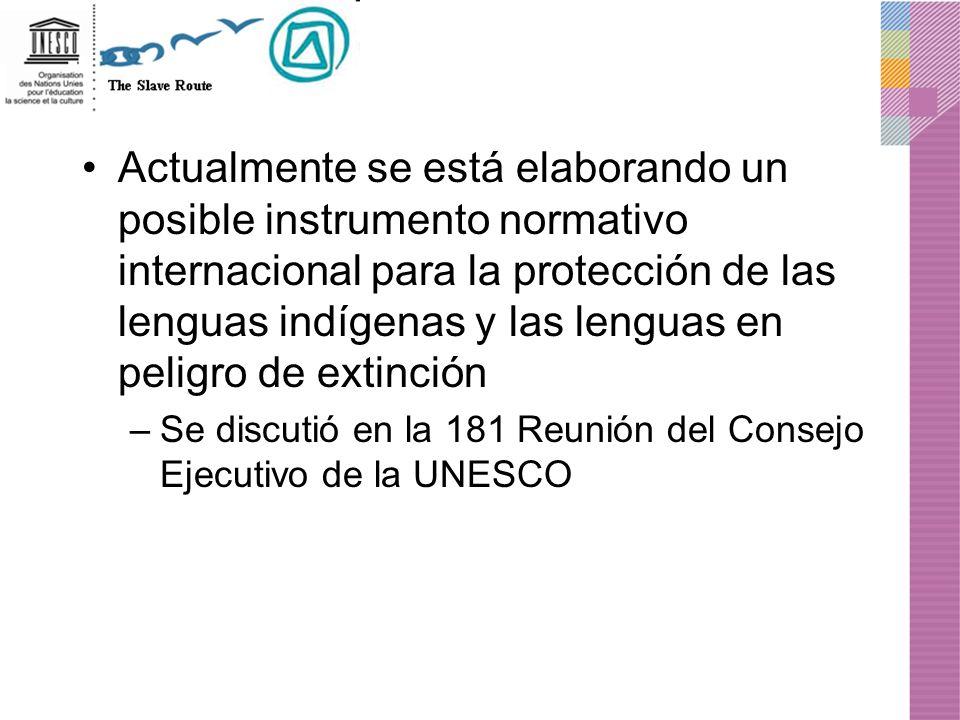 Actualmente se está elaborando un posible instrumento normativo internacional para la protección de las lenguas indígenas y las lenguas en peligro de extinción