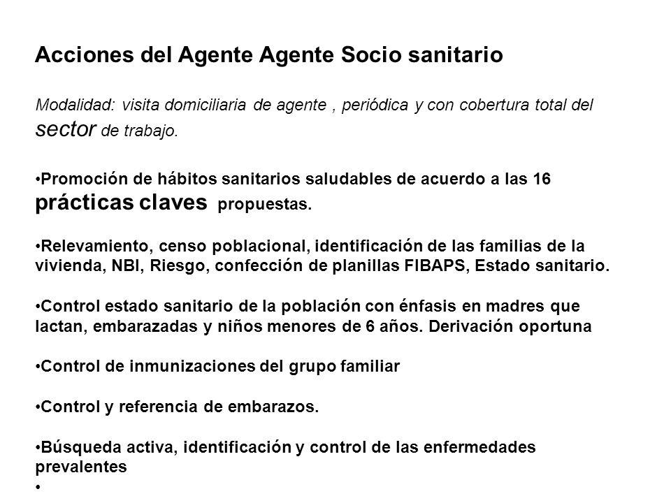 Acciones del Agente Agente Socio sanitario