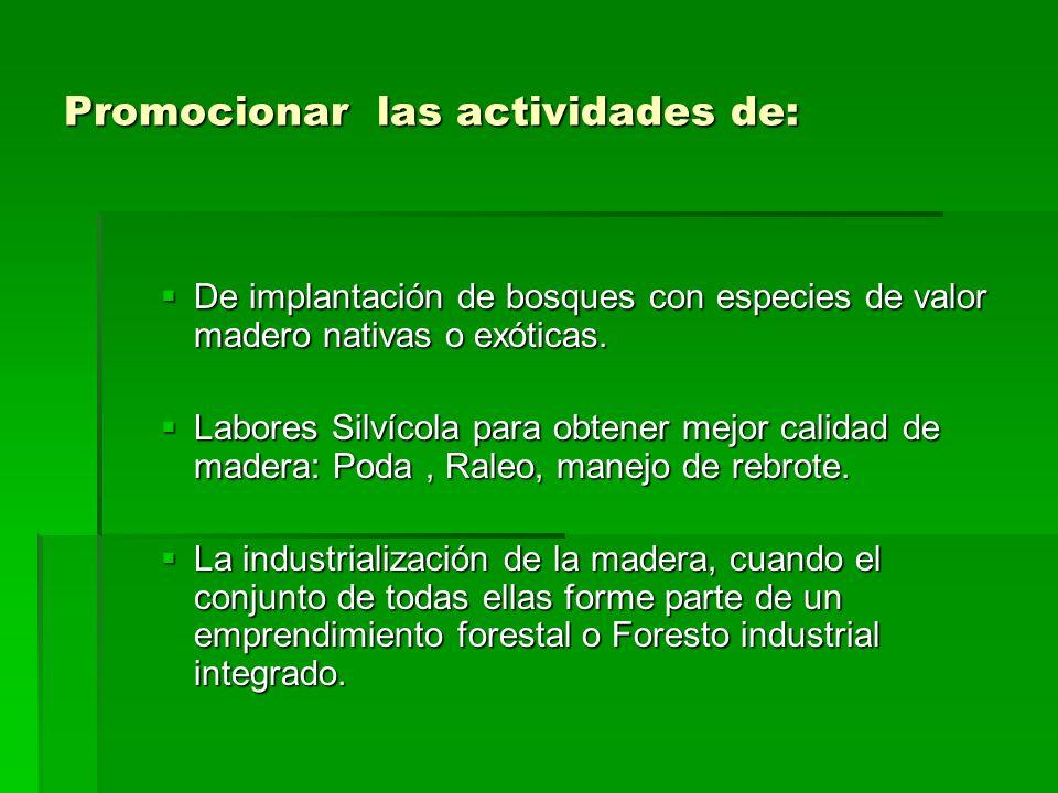 Promocionar las actividades de: