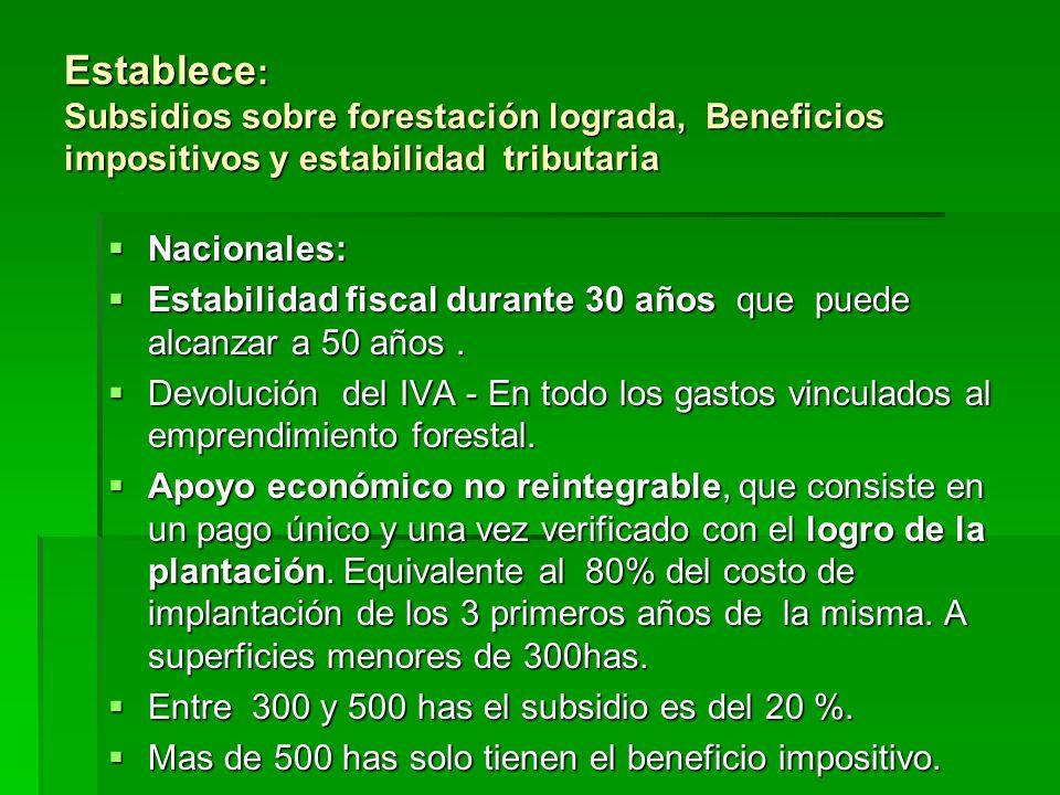 Establece: Subsidios sobre forestación lograda, Beneficios impositivos y estabilidad tributaria